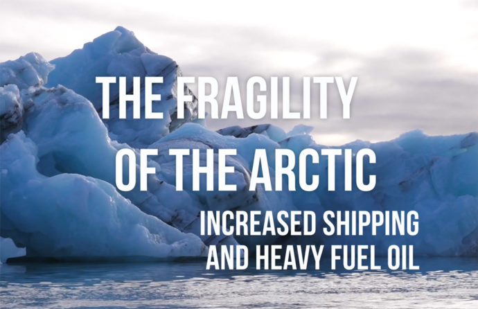 The Fragility of the Arctic
